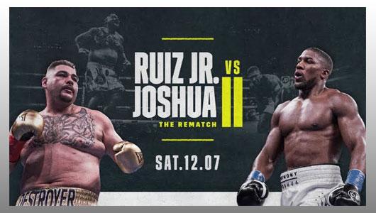 Andy Ruiz Jr vs Anthony Joshua