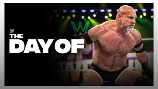 wwe day of wssd 20